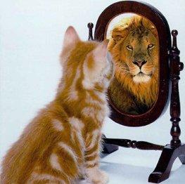 Espelho_meu