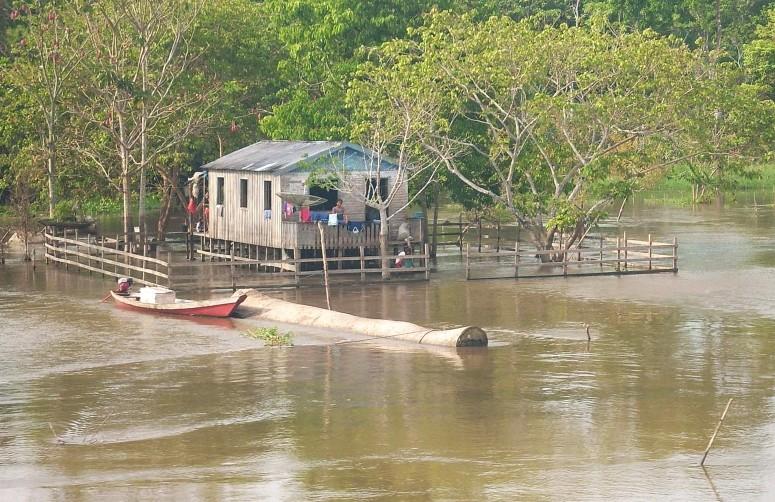 Margem esquerda do Rio Solimões, na Amazônia