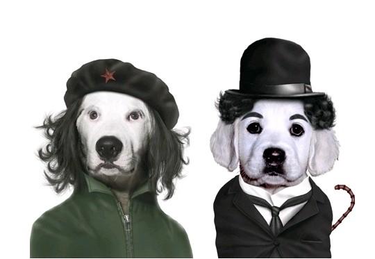 Cães - Che Guevara e Charles Chaplin