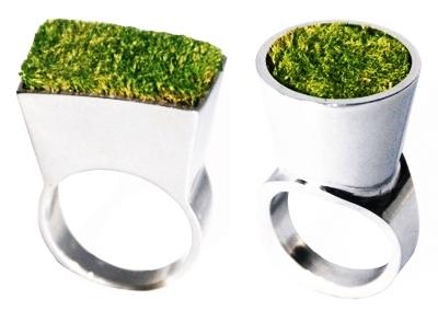 Anéis verdes com mini jardins de musgo