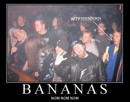 babaca comendo banana em show de rock heavy metal