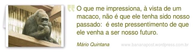 Frase sobre Macacos - Mário Quintana