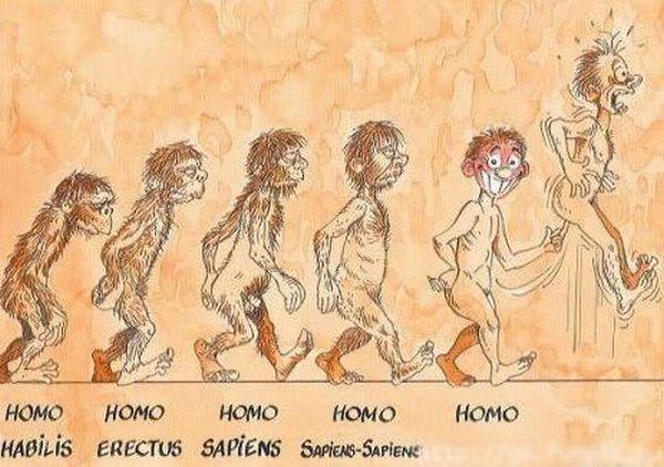 Moderna Teoria da Evolução Humana