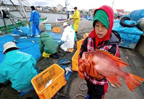 Radioatividade em peixes e alimentos