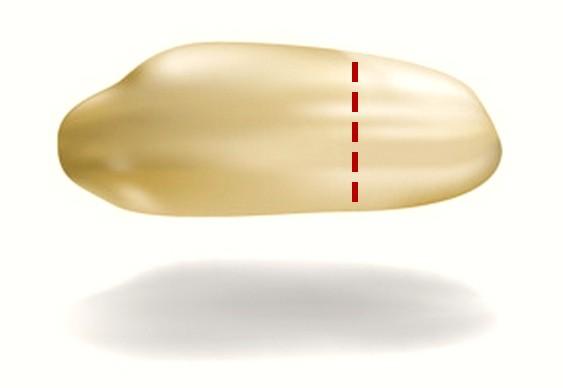 Nanomarcapasso