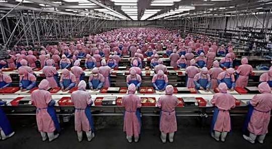 Linha de produção chinesa