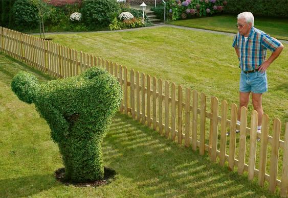 Comunicação gasosa entre vegetais