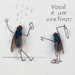 Drosophila melanogaster bêbada