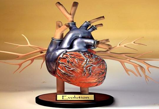 Coração com turbinas
