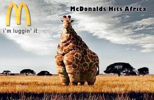 Obesidade e McDonalds
