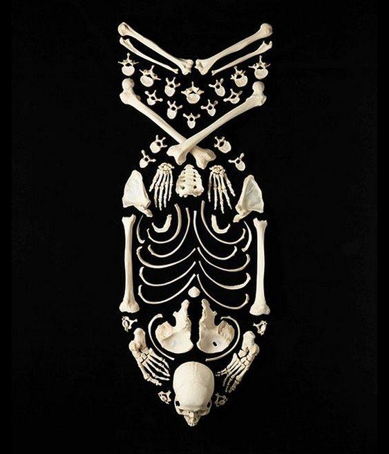 Bomba Esqueleto