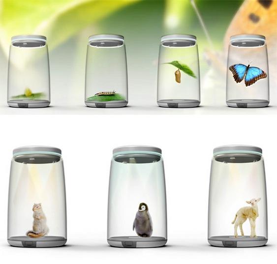 Bichos em imagens 3D