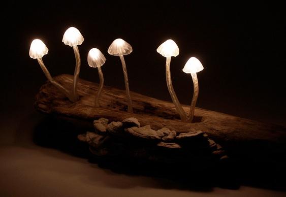Luminária com Cogumelos