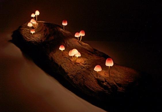 Luminária de Cogumelos
