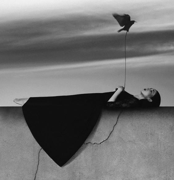 Noell Oszvald Pássaro Surreal