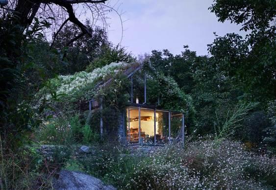 Garagem coberta por vegetação