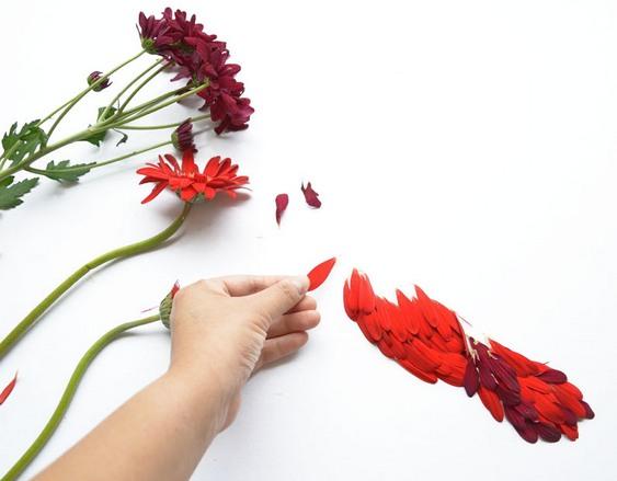 Ave de flores coloridas