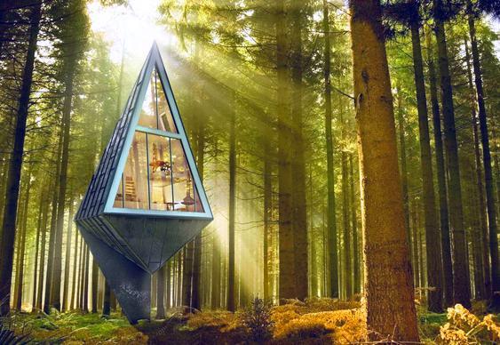 Casa Árvore