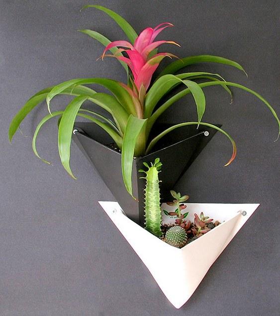 Vaso ecológico para plantas ornamentais
