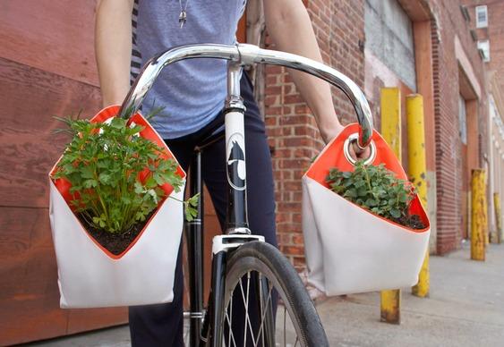 Vasinhos ecológicos para legumes e verduras