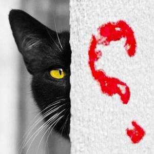 Blog do gato preto
