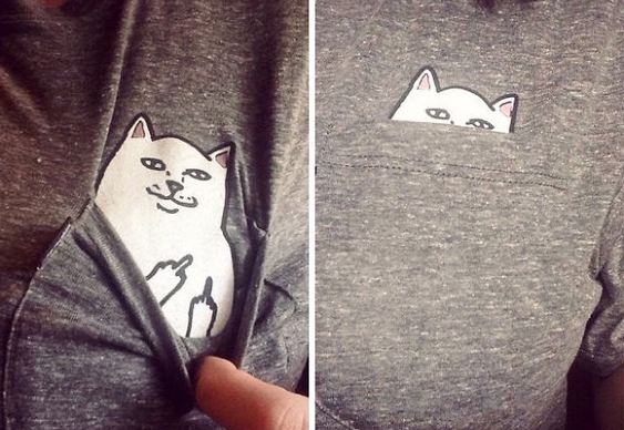 Gato invocado