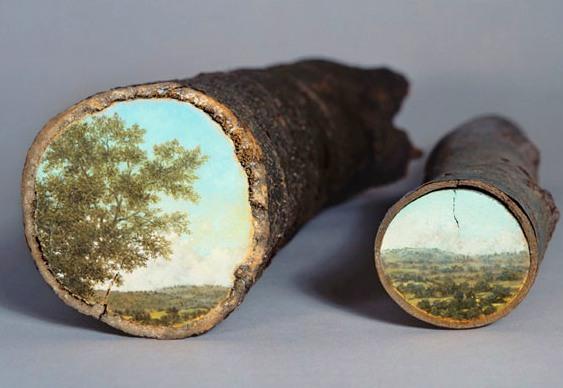 Vista de paisagens naturais