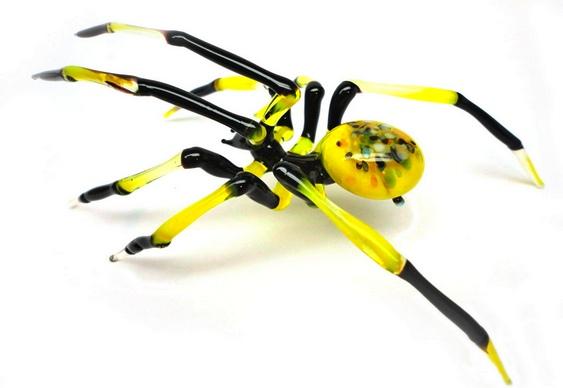 Aranha de vidro
