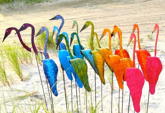 Aves pernaltas em movimento