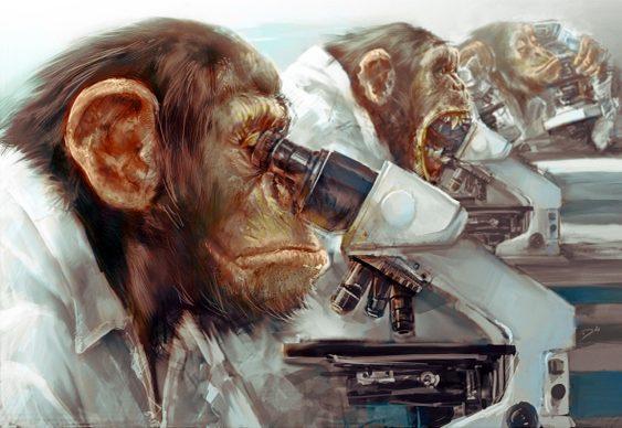 Evolução Darwin