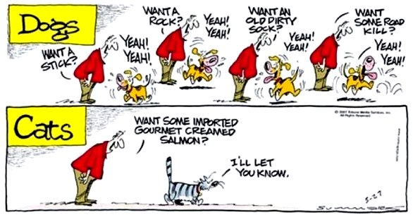 Personalidades de cães e gatos