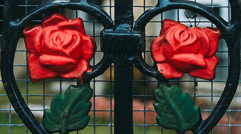 Grade de ferro com rosas